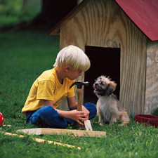 Boy working on doghouse