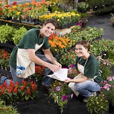 Employees at a garden center