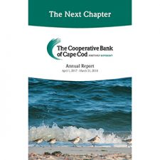 """Cover photo of 2017-2018 Annual Report titled """"The Next Chapter"""" with a photo of Piping Plovers on the beach."""