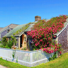 Image of a cottage with lots of flowers in Nantucket, Massachusetts